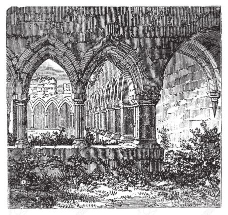 13772212-gothic-cloisters-and-arch-at-kilconnel-abbey-in-county-galway-ireland-old-engraving-old-engraved-ill-stock-vector